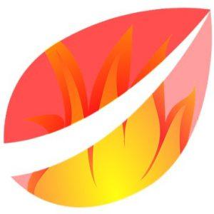 Blogger 'Bitfinex'ed' Hires Legal Counsel to Fight Bitfinex Lawsuit